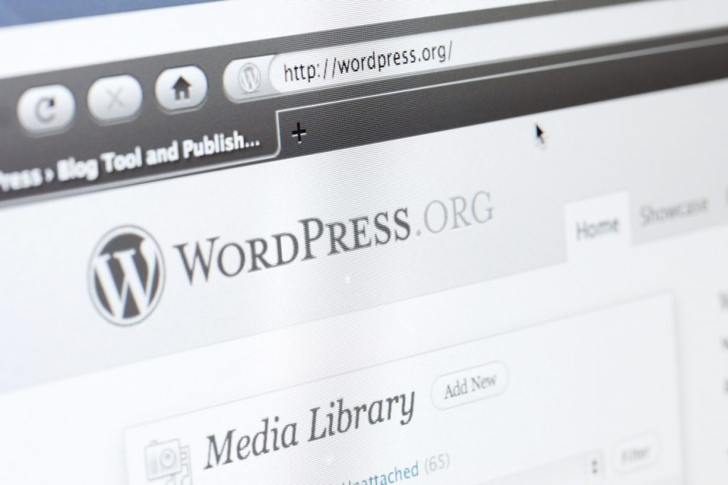 Do I Have to Use WordPress? class=